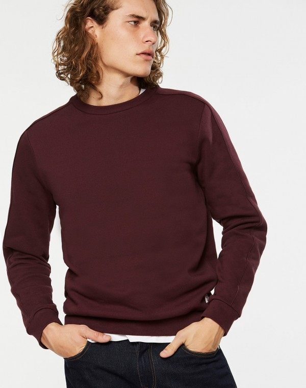 Robin Sweatshirt Pullover